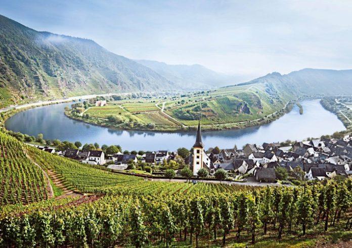 Mosel 696x491 - Deutsches Weininstitut präsentiert: Beste Lagen hoch 13