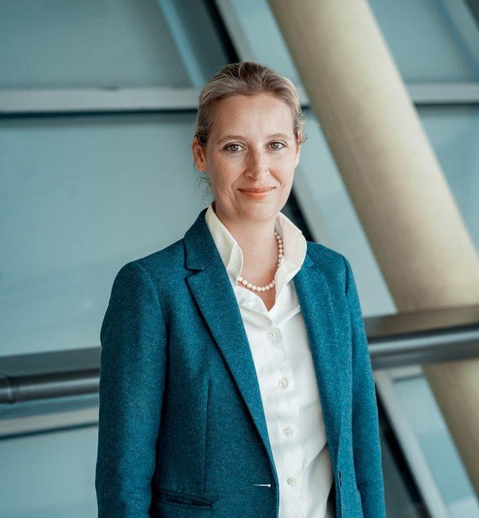 DSC09773b 696x752 - Alice Weidel: Deutschland braucht den Freiheitstag!